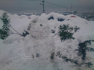 自然,雪,屋外,景色,雪だるま,新年