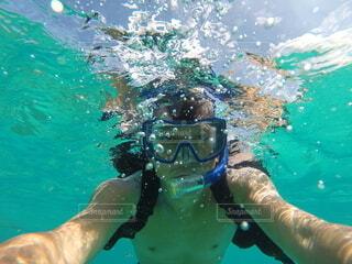スポーツ,緑,水面,葉,泳ぐ,マリンスポーツ,スキューバ ダイビング,ダイビング用品,ダイブ マスター,水中スポーツ,アクアノート