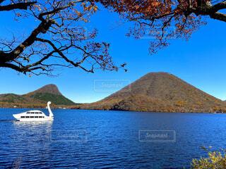 自然,風景,空,屋外,湖,水面,山,景色,樹木,スワン,遊覧船,日中