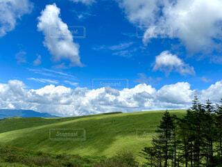 自然,風景,空,雲,青い空,景色,草,樹木,大地