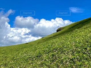 自然,風景,空,緑,草原,雲,山,景色,草,丘,高原,草木