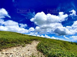 自然,風景,空,雲,青,景色,草,丘,高原,霧ヶ峰,草木