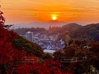 自然,風景,夕日,屋外,山,オレンジ,樹木