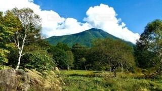 自然,風景,空,緑,雲,山,景色,樹木,草木