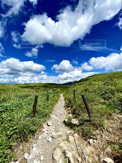 自然,風景,空,屋外,雲,景色,草,丘,大地,高原,ハイキング,真夏,霧ヶ峰,草木,日中,車山高原,山腹