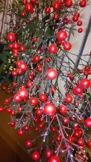 風景,植物,赤,ナンテン,枝,室内,美しい,紅白,めでたい,丸,実,日本,たくさん,赤い実,お正月,装飾,和風,祝い,南天,丸い,赤い,赤と白,祝,なんてん,お正月飾り,対称,無数,白と赤,配置,丸い実