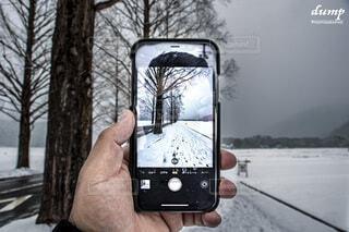 自然,風景,冬,雪,屋外,雲,手,樹木,iphone,画面,冷たい,雪化粧,日中,携帯電話,メタセコイア並木,流行り,高島市,スクリーン ショット