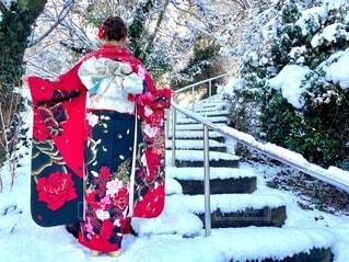 雪景色と振袖姿の写真・画像素材[4049209]