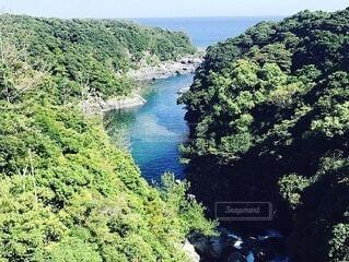 自然,風景,空,屋外,湖,島,川,水面,山,丘,樹木,旅行,草木