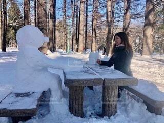 公園,冬,森林,樹木,雪だるま,ティータイム,デート,冷たい,スノーマン,雪国,日中