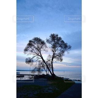 自然,風景,空,木,屋外,湖,海外,ビーチ,雲,きれい,綺麗,青,夕焼け,黒,水面,海岸,影,美しい,朝焼け,樹木,オシャレ,外国,壁紙,眺め,テキスト,キレイ