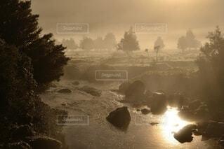 自然,風景,空,春,絶景,木,屋外,太陽,森,ビーチ,雲,夕焼け,幻想的,川,水面,林,霧,朝焼け,樹木,煙