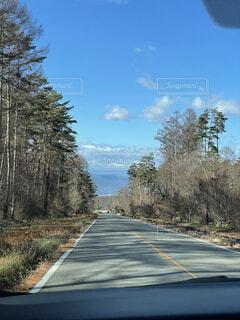 自然,空,屋外,雲,道路,樹木,道,草木