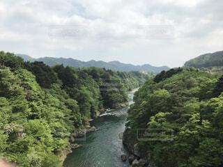自然,風景,森林,屋外,水面,景色,樹木,新緑,運河