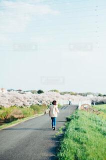 草の中を歩いている人々のグループの写真・画像素材[4211143]