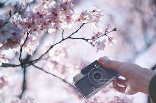 花を持っている人の写真・画像素材[4233246]