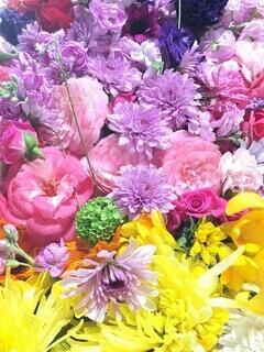 花,花束,バラ,景色,花びら