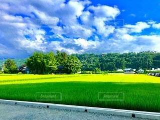 自然,風景,空,屋外,草原,雲,景色,草,樹木,新緑,富山,草木,日中,黒部
