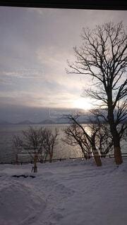 自然,風景,空,冬,水面,樹木
