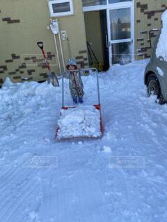 自然,雪,屋外,子供,お手伝い