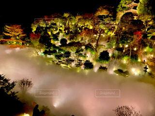 自然,夜景,東京,TOKYO,ライトアップ,日本,雲海,japan,椿山荘