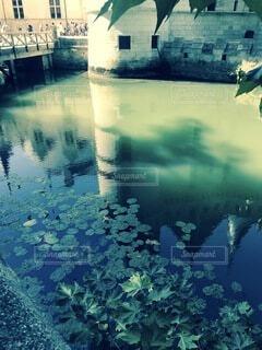 自然,屋外,湖,水面,池,城,ヨーロッパ,反射,フランス,草木,ロワール,おとぎばなし