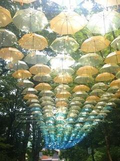 傘,屋外,カラフル,たくさん