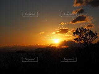 自然,風景,空,屋外,太陽,朝日,雲,夕暮れ,樹木,正月,お正月,日の出,新年,初日の出