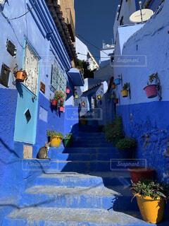 猫,青,旅,シャウエン,モロッコ,通り