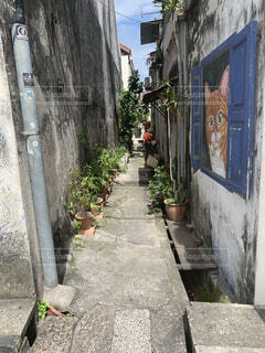 風景,建物,屋外,都会,道,歩道,地面,通り,草木,縁石