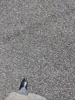 道の写真・画像素材[4073079]