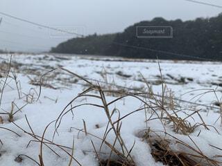 自然,空,冬,雪,屋外,湖,水面,覆う