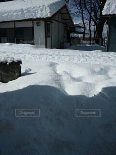 自然,雪,屋外,日中,覆う