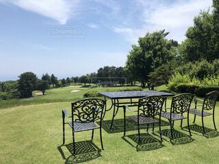 空,芝生,屋外,晴れ,ベンチ,椅子,樹木,新緑,ゴルフ,快晴,草木,日中