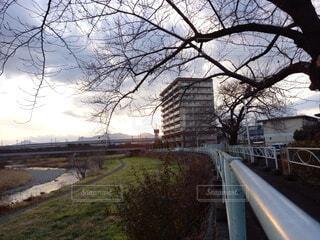 空,公園,建物,屋外,雲,草