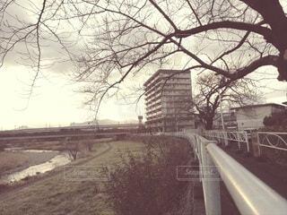 空,屋外,雲,樹木,歩道,地面,通り,日中