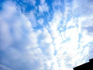 空,雲,くもり,日中