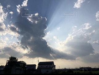 空,群衆,屋外,太陽,雲,樹木,くもり,日中