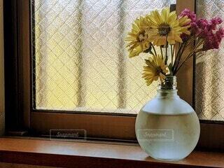 花,かわいい,きれい,水,花瓶,黄色,窓,美しい,植木鉢,観葉植物,紫色,出窓,一輪挿し,空き瓶,ヒナギク,雛菊