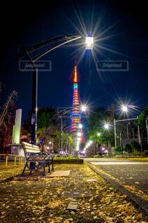 東京タワー,夜,夜景,紅葉,屋外,東京,落ち葉,タワー,イチョウ,東京都,芝公園,2021