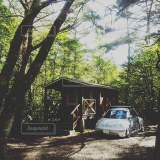 屋外,車,樹木,キャンプ ワーゲン ビートル