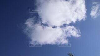 自然,空,屋外,雲,晴れ,青空,見上げる,夏空,くもり,雲の流れ