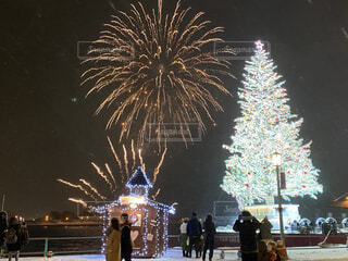 夜,夜景,花火,樹木,クリスマス,装飾,明るい,函館,景観,パーム,クリスマス ツリー