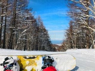 空,冬,雪,屋外,樹木,スキー,運動,スノーボード,斜面,ウィンタースポーツ,覆う,そり