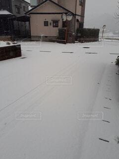 雪,白,道路,南の雪国