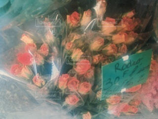 パリの花屋のバラの写真・画像素材[4230251]