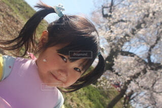 桜の下でピクニックの写真・画像素材[4303842]