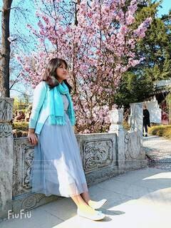 春色のショールの写真・画像素材[4306759]