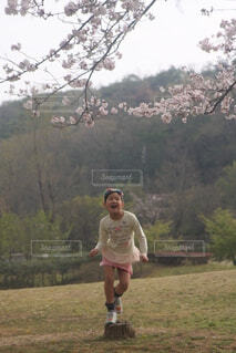 桜と翔けていく少女の写真・画像素材[4343534]