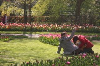 チューリップの咲く庭園で写真を撮る女の子の写真・画像素材[4348875]